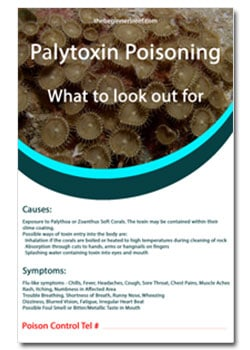 Palytoxin-Poisoning-Guide