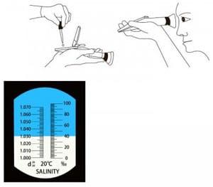 Refractometer Reading
