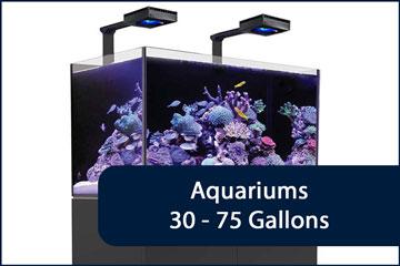 Aquariums 30-75G