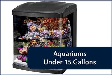 Aquariums Under 15G