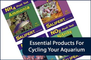 Aquarium Cycle Essentials Header