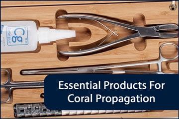 Fragging Essentials Header