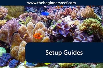 Setup Guides Header