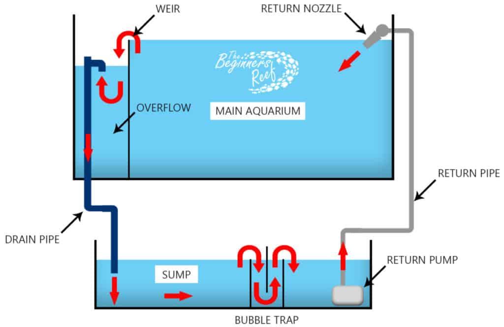 Aquarium Sump Operation